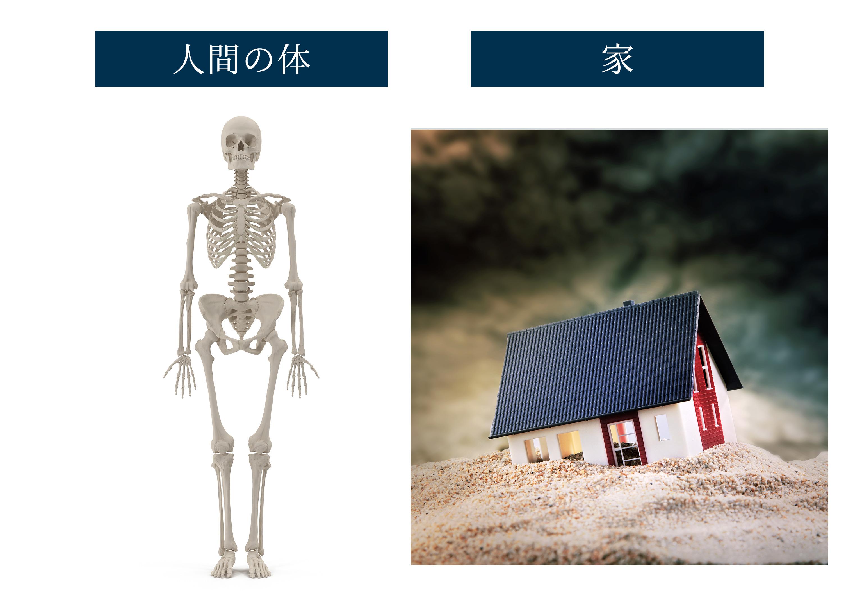 人間の体は骨の積み木状態